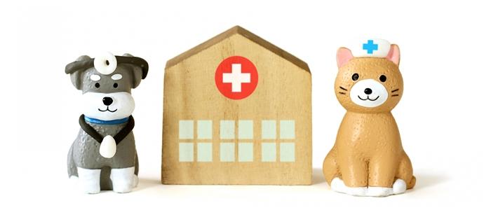 動物看護士の将来性