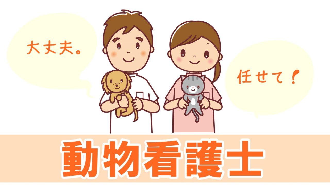 動物看護士になる方法と資格