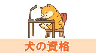 犬関連の資格と仕事に就く方法